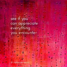 Get your gratitude on! Pretty Words, Cool Words, Wise Words, Positive Thoughts, Positive Quotes, Positive Vibes, Acceptance Quotes, Power Work, Simple Reminders
