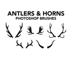 New FREE Paper Pegasus' brushes on Brusheezy! #antlers #horns #taxidermy #christmas #moose #reindeer #animals #silhouettes