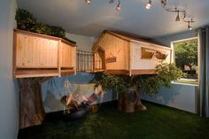 simple double indoor tree houses
