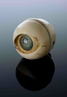 Ivory and horn model of an eye, possibly 17th century.