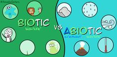 Biotic and Abiotic GIF by the Amoeba Sisters