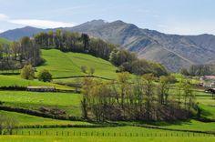 La campagne basque près de Saint-Etienne de Baïgorry, Basse-Navarre, Pays basque, Pyrénées Atlantiques, Aquitaine, France.
