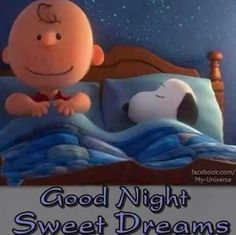Charles Schulz's Peanuts Charlie Brown and Snoopy Charlie Brown Snoopy, Charlie Brown Quotes, Charlie Brown Characters, Snoopy Love, Snoopy And Woodstock, Peanuts Characters, Good Night Wishes, Good Night Sweet Dreams, Good Night Quotes