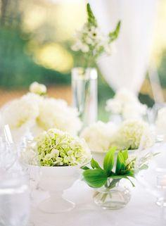 white flower elegance.