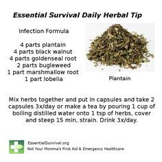 Dr. Christopher's Infection Formula is made of powerful infection-fighting herbs.
