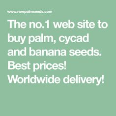 The no.1 web site to buy palm, cycad and banana seeds. Best prices! Worldwide delivery!