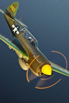 Wings in the sky — Curtiss P-40