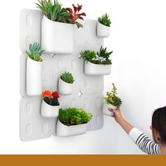 Urbio is a magnetic vertical garden designed to transform any wall or ferrous metal surface into a beautiful living green space. Each Urbio vessel is made of recycled plastic and is equipped with neodymium magnets that are strong enough to hold almost anything to the wall. Urbio can accommodate any space, allowing users to mount a single vessel or tile or to create an entire wall. Credits: Enlisted Design, Jared Aller, Beau Oyler, Julian Bagirov, Seounghyun Son, Conner Wishard and Tim…