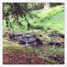 Craigside house stream , Northumberland UK To book go to www.notjusttravel.com/anglia