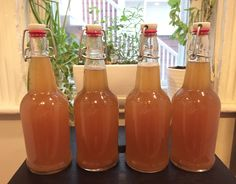 ATTN: I am successfully brewing kombucha! Some of you might know this if you follow me on Instagram or other social media. In this blog post, I'm going to tell you exactly how to brew kombuch…