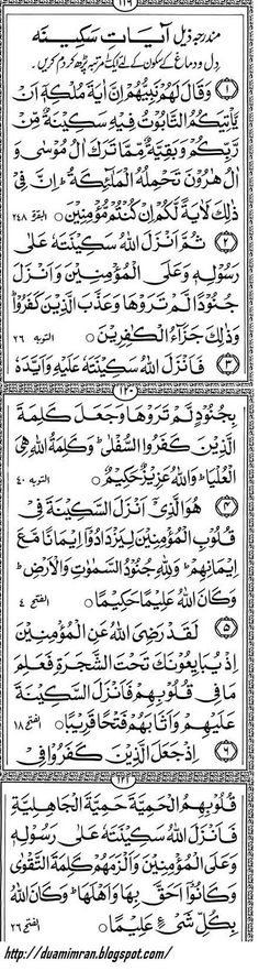 Ayat-e-Skina, A collection of Ayats from Quran Kareem for tranquility. If you are impatient or want peace read these.