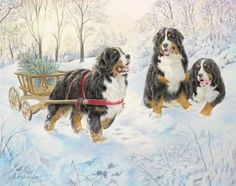 """This card was exclusively designed for Berner Treasures by artist Anne Mainman. Card is 5 x 7, and has the following text inside: """"Merry Christmas"""" Sold as a 15 pack with envelopes. Limited Supply."""