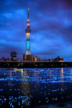 #Skytree in #Tokyo during Hotaru #festival. #LED lights in the #sumida river.