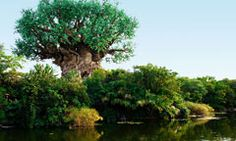 The Tree of Life  Attraction at Disney's Animal Kingdom® Park