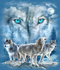 Diamond Painting Eyes of the Wolf Kit - Monde Des Animaux Tattoos Lobo, Wolf Tattoos, Wolf Images, Wolf Pictures, Wolf Spirit, My Spirit Animal, Beautiful Wolves, Animals Beautiful, Tier Wolf