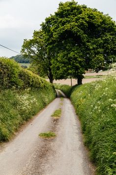 Wiltshire, England by peaflockster-----We drove itty-bitty roads like this, with sister smooshing me into the hedgerow whenever we met an oncoming car. Country Life, Country Roads, Nature Photography, Travel Photography, Places To Visit, Places To Travel, Back Road, English Countryside, Lake District