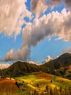 beauty of nature(tizi ouzou algéria)