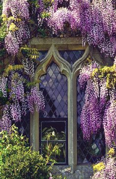 Image: Svetlana Sewell - Window with lilacs #1
