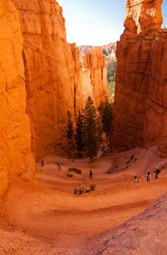 navajo trail, Sunset Point, Bryce Canyon National Park