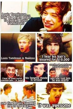 Mean Girls + One Direction = My life completed.