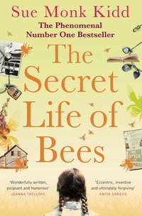 Fishpond Australia, The Secret Life of Bees by Sue Monk Kidd. Buy Books online: The Secret Life of Bees, ISBN Sue Monk Kidd The Secret, Secret Life, Reading Lists, Book Lists, Reading Lessons, Night Manager, Joanna Trollope, Best Summer Reads, Bee Book