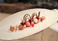 Beautiful dessert by Team Sweden - IKA Culinary Olympics 2012 - The Chicago School of Mold Making