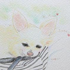今日のわんこ☆no.59 @kaoru__a さんのお家のチップちゃん❤️ ワンコのスヤスヤ~なお顔って、 本当に可愛いですよね~❤️(*´ω`*) 和みます❣️ @kaoru__a さん、ありがとうございます!先日は正面だったので、今回はうたた寝顔にしてみました~♪ #1日1絵 #365チャレンジ #ワンコlove #わんこ大好き #わんこ部 #わんこ #愛犬イラスト #愛犬 #うちの子イラスト #イラスト部 #イラスト #いらすと #パステルアート #パステル #アナログイラスト絵描き #ちわわ #ちわわ部 #チワワ大好き #チワワ #チワワ部 #うたた寝 #illustration #art #dog #dogstagram #chihuahua #モデルさん募集中