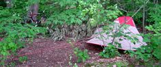 The Secrets of Stealth Camping