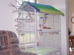 A lovely cage for a single little green budgie! The question is, can you find her?