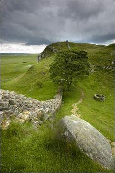 A view of Sycamore Gap along Hadrians Wall