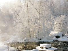 winterscape in Finland, Laukaa. Photo Katja Haapakoski