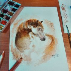 Hi guys!  This is the horse of the week @taylorcheyannef 's horse   Pencils & Watercolors   Wanna see a portrait of your horse?  Tag the best photo of him whit #roxaoleenhorse for a chance to be chose!!   #art_realistique #artoftheday #artcomplex #imagionation_art #arts_help #arts_mag  #artist #worldoftalents #roxaoleen #realistic_arts #dailyarts #worldofpencils #raresart #photooftheday #art_helps #artworld_share #talentedpeopleinc  #quarterhorse #horses #phanasu #sketch_daily…
