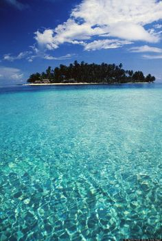 Take a dip in the crystal clear waters off Dog Island, San Blas, Panama