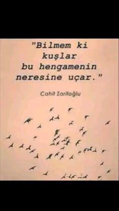 Bilmem ki kuşlar bu hengamenin neresine uçar Cahit Zarifoğlu