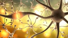 Multiple Sklerose hat viele Gesichter und wird oft spät diagnostiziert. Hier erfahren Sie die ersten Warnzeichen.