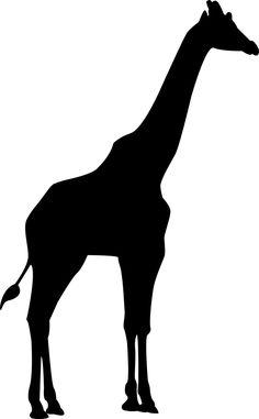 Free Image on Pixabay - Giraffe, Africa, Zoo, Wilderness Animal Silhouette, Silhouette Art, Ballerina Silhouette, Giraffe Drawing, Giraffe Art, Animal Outline, Animal Stencil, Africa Art, Image Icon