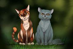 Medicine Cats by heylorlass.deviantart.com on @DeviantArt