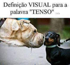 Tadinho!!