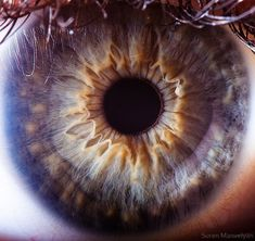 You'll Never Look People In The Eyes The Same After Seeing These 21 Close-Ups Of The Human Eye