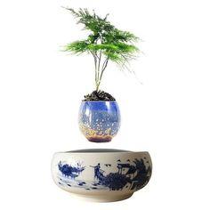 magnetic levitating air floating bonsai ceramics pot (no plant) for sale online Bonsai Tree Types, Indoor Bonsai Tree, Bonsai Plants, Green Plants, Air Plants, Potted Plants, Plant Pots, Floating Plants, Types Of Plants