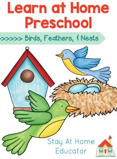 Birds, Feathers, & Nests Preschool Lesson Plans - Stay At Home Educator