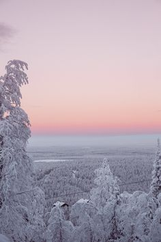 A Winter Adventure in Finnish Lapland — Bronwyn Townsend Sky Aesthetic, Travel Aesthetic, Winter Scenery, Winter Sky, Winter Wallpaper, Pretty Sky, Winter Pictures, Photo Wall Collage, Winter Christmas