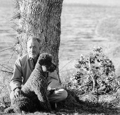 John Steinbeck's Poodle, Charley | Best In Show Daily | 2014