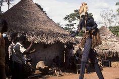 Echassier - Côte d'Ivoire - Ivory Coast