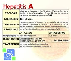 Licensed Practical Nurse, Medicine Student, School Information, Med School, Study Tips, Biology, Medical, Health, Hepatitis A