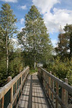 Gångbroar vid Storforsen