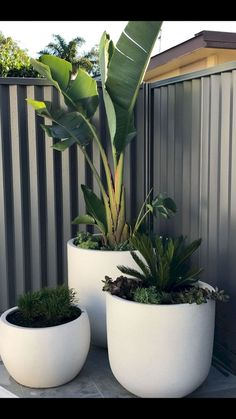 Unique Modern Precast Planters To Make Your Outdoors StylishYou can find Modern landscaping and more on our website.Unique Modern Precast Planters To Make Your Outdoors Stylish Backyard Patio, Backyard Landscaping, Patio Wall, Unique Garden, Patio Plants, Garden Plants, Balcony Garden, Gravel Garden, Outdoor Potted Plants
