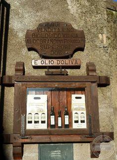 Frascati, Italy.... Porchetta, Villas and Crisp White Wine! - Italy Connect - The Villa Sells Their Own Olive Oil And Bio Wine !!