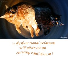 ... dysfunctional relations will obstruct an enticing #equilibrium !