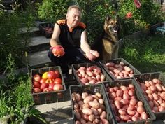 Igor Ljadov a jeho postupy pri hnojení záhrady - OZ Biosféra Summer House Garden, Life Design, Aarhus, Stuffed Mushrooms, Vegetables, Gardening, Color Art, Kiwi, Farming